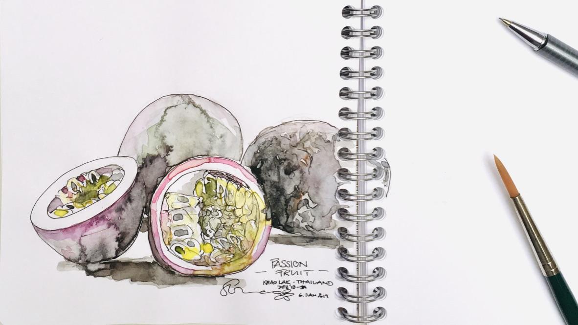 SL_Passionfruits_Zeichnung_1901_1080x608